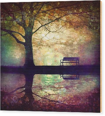 A Place To Rest In The Dark Wood Print by Tara Turner