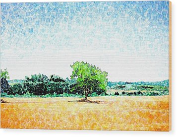 A Tree Near Siena Wood Print by Jason Charles Allen