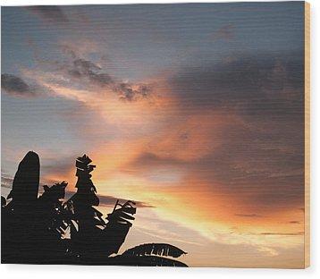 Abuja Sunset Wood Print by Hakon Soreide