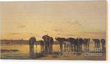 African Elephants Wood Print by Charles Emile de Tournemine