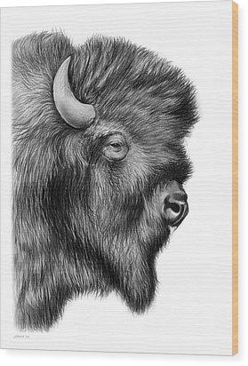 American Bison Wood Print by Greg Joens