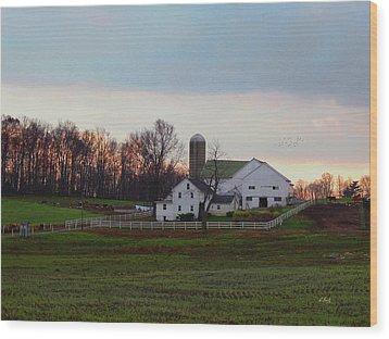 Amish Farm At Dusk Wood Print by Gordon Beck