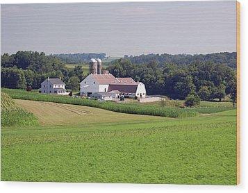 Amish Farm Wood Print by Joyce Huhra