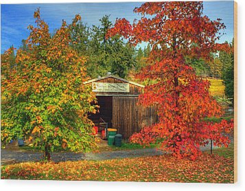 Apple Shed Wood Print by Randy Wehner Photography