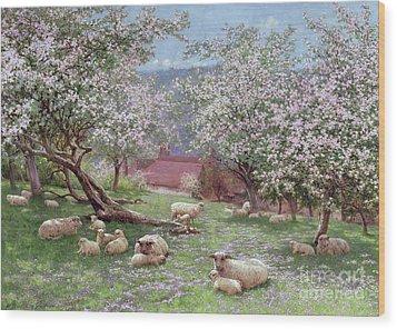 Appleblossom Wood Print by William Biscombe Gardner