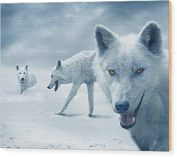 Arctic Wolves Wood Print by Mal Bray