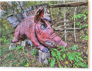 Arkansas Razorbacks Wood Print by JC Findley