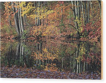 Autumn Colors Reflect Wood Print by Karol Livote