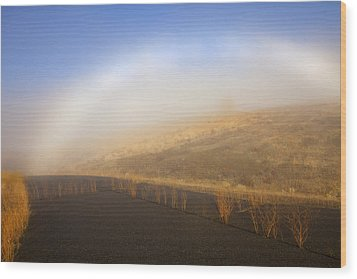Autumn Fog Bow Wood Print by Mike  Dawson