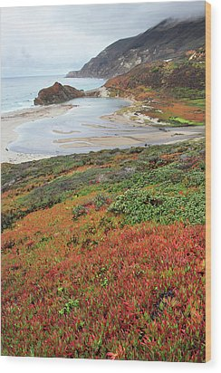 Autumn In Big Sur California Wood Print by Pierre Leclerc Photography