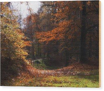 Autumn Landscape Wood Print by Artecco Fine Art Photography