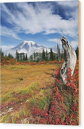 Autumn Majesty Wood Print by Mike  Dawson