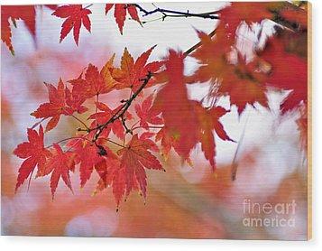 Autumn Pastel Wood Print by Kaye Menner
