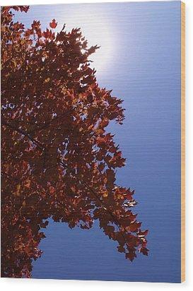 Autumn Sky I Wood Print by Anna Villarreal Garbis