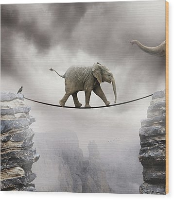 Baby Elephant Wood Print by by Sigi Kolbe