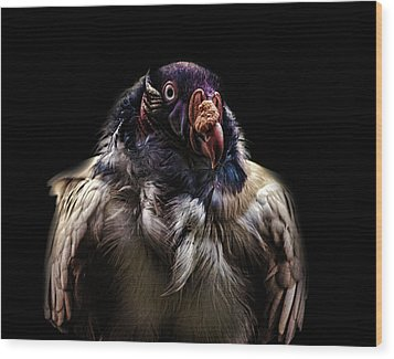 Bad Birdy Wood Print by Martin Newman