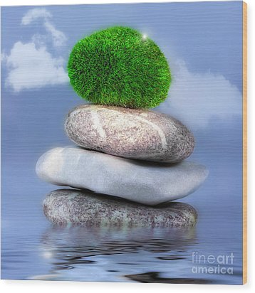 Balance Wood Print by VIAINA Visual Artist