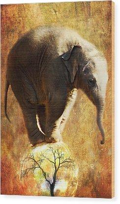 Balance Wood Print by Trudi Simmonds