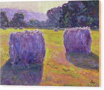 Bales Of Hay Wood Print by Michael Camp