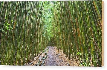 Bamboo Forest Trail Hana Maui 2 Wood Print by Dustin K Ryan