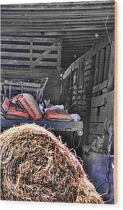 Barn Cats Wood Print by Jan Amiss Photography