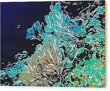 Beautiful Sea Fan Coral 1 Wood Print by Lanjee Chee