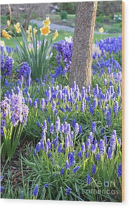 Beautiful Spring Day Wood Print by Carol Groenen