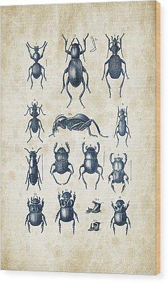 Beetles - 1897 - 01 Wood Print by Aged Pixel
