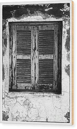 Behind The Shutter Wood Print by John Rizzuto