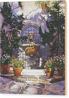 Bellagio Fountain Wood Print by David Lloyd Glover