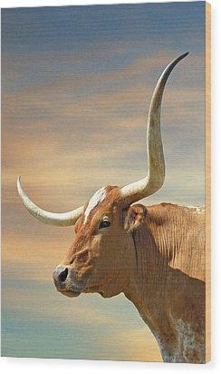 Big Horns Wood Print by Robert Anschutz