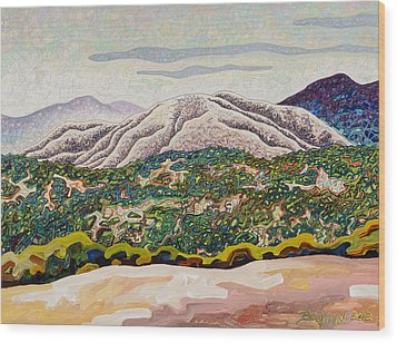 Birdseye Landscape #4 Wood Print by Dale Beckman