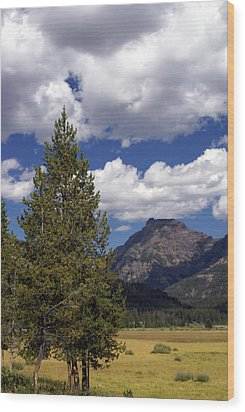 Blacktail Plateau Vertical Wood Print by Marty Koch