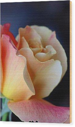 Bloom Wood Print by KC Moffatt