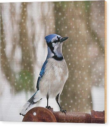 Blue For You Wood Print by Evelina Kremsdorf