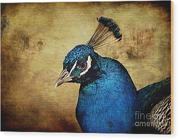 Blue Peacock Wood Print by Angela Doelling AD DESIGN Photo and PhotoArt