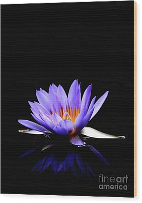 Blue Water Lily . 7d5714 Wood Print by Wingsdomain Art and Photography