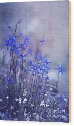 Bluebell Heaven Wood Print by Priska Wettstein