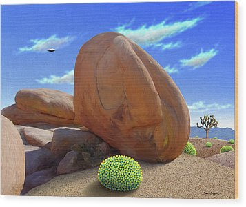 Boulders Wood Print by Snake Jagger