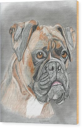 Boxer Wood Print by Don  Gallacher