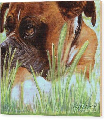 Boxer  Wood Print by Patricia L Davidson