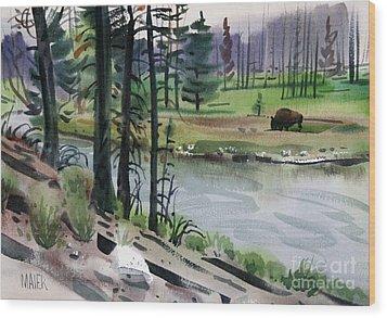 Buffalo In Yellowstone Wood Print by Donald Maier
