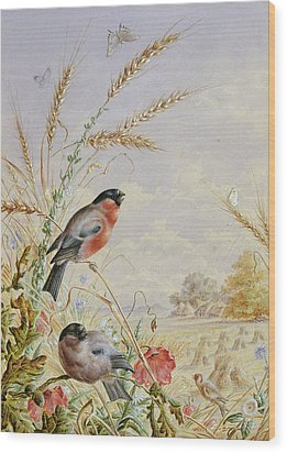 Bullfinches In A Harvest Field Wood Print by Harry Bright