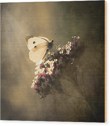 Butterfly Spirit #01 Wood Print by Loriental Photography