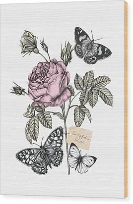 Cabbage Rose Wood Print by Stephanie Davies