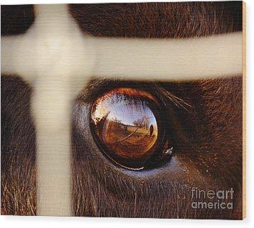 Caged Buffalo Reflects Wood Print by Robert Frederick