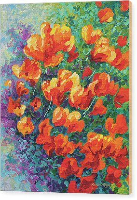 California Poppies Wood Print by Marion Rose