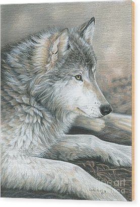 Calm Wolf Wood Print by Carla Kurt