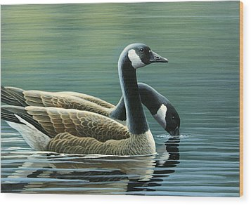Canada Geese Wood Print by Mark Mittlesteadt
