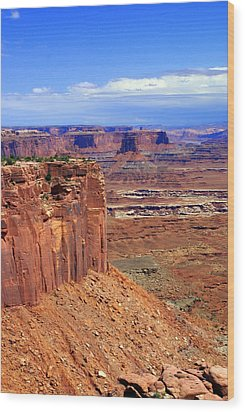 Canyonlands 4 Wood Print by Marty Koch
